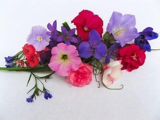 flowerboucket-1395463
